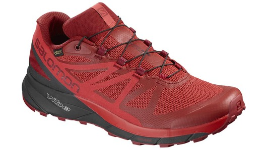 Мужская обувь Salomon SENSE RIDE GTX® INVISIBLE FIT 404940