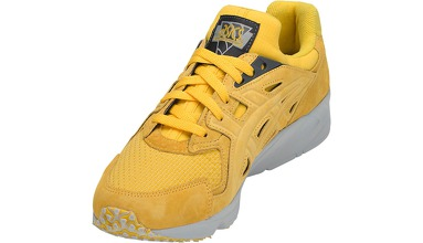 Мужская обувь Asics GEL-DS TRAINER OG H841L-0404
