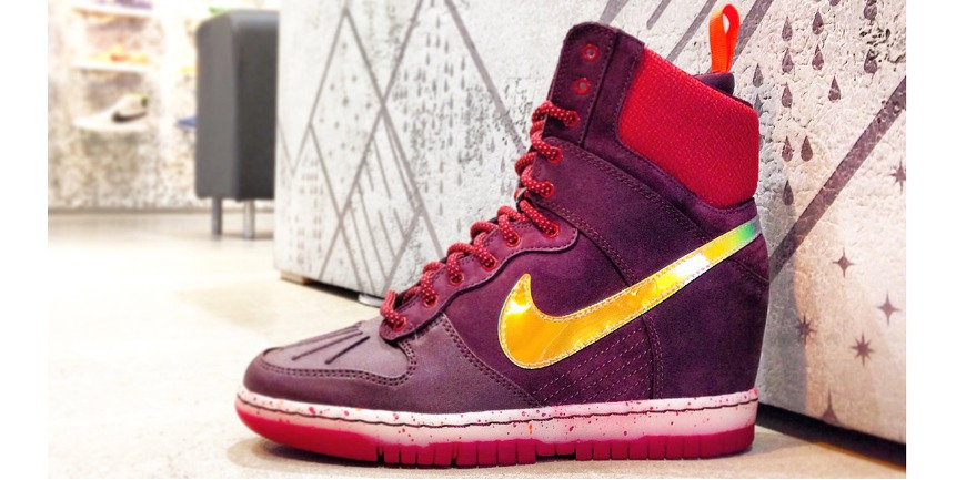 Женская обувь Nike Wmns Dunk Sky Hi Sneakerboot  684954-600